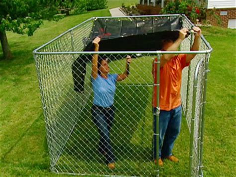 chain link run how to install a chain link run breeds picture