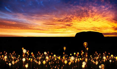 a at field of light field of light uluru ayers rock resort