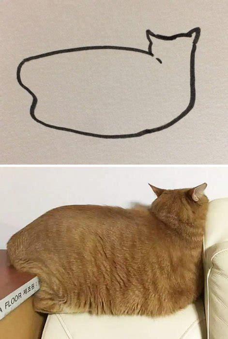 divertidos dibujos abstractos de gatos el gancho