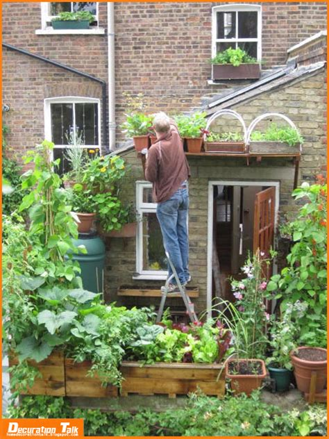 Window Vegetable Garden Best Vegetables To Grow On Balcony Home Decoration Ideas