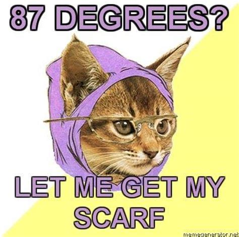 Hipster Kitty Meme - hipster kitty know your meme