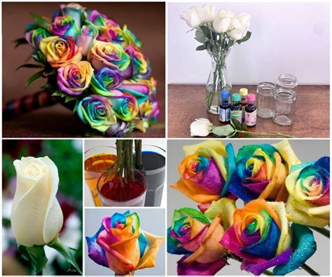 Cake Vase Set Wonderful Diy Beautiful Rainbow Roses
