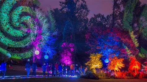 duquoin holiday lights fair 2017 10 things to do in surrey in november daily hive vancouver