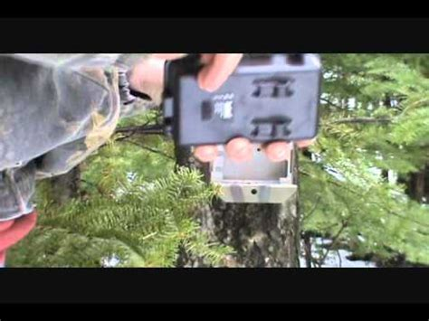 bushnell trophy cam hd essential | doovi