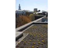 apex green roofs professional green roof design greenroofs com projects harvard university business