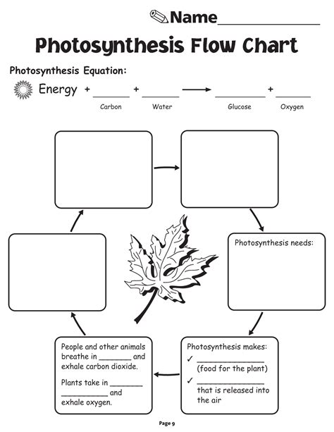 photosynthesis flowchart photosynthesis ks2 worksheet 28 images carbon cycle
