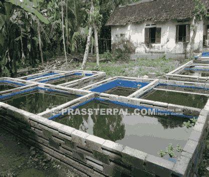 Jual Kolam Terpal Siap Pakai Bandung jual kolam terpal siap pakai prassterpal