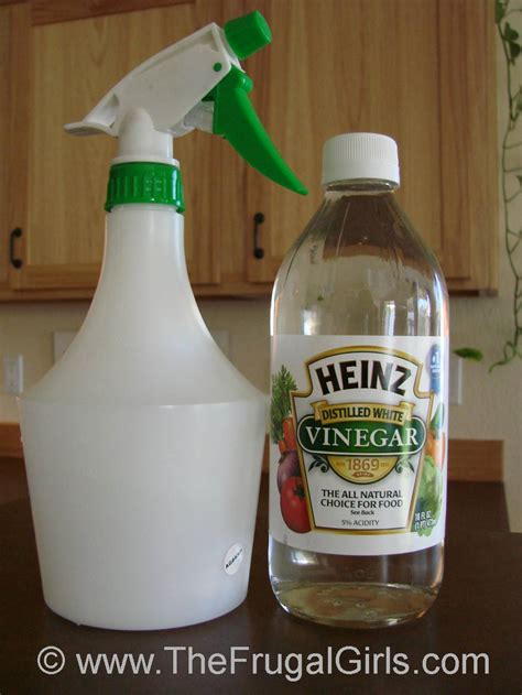 vinegar and water for hardwood floors real wood floors why water and vinegar don t work