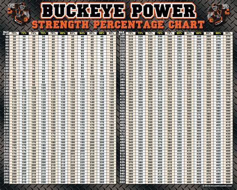 buckeye bench workout buckeye bench press workout chart eoua blog