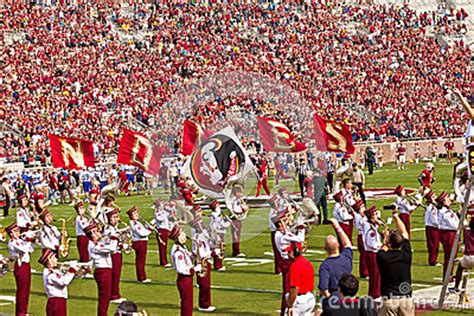 the marching chiefs of florida state the band that never lost a halftime show books college football editorial stock photo image 33527938