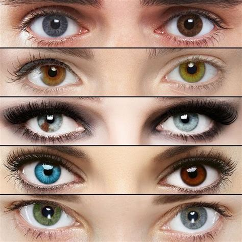 2 different eye colors 17 best images about on different colored
