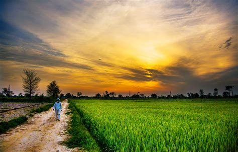 wallpaper for walls in peshawar 62 countryside hd wallpapers backgrounds wallpaper