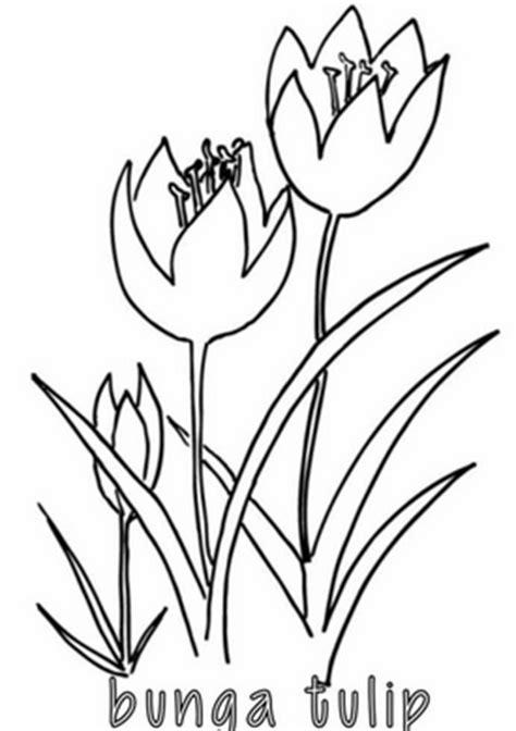 Mewarnai Bunga dengan Warna yang Cerah - Belajar Mewarnai