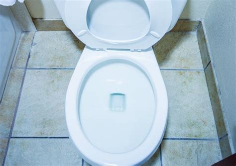 pee smell in bathroom removing urine odors from a bathroom thriftyfun