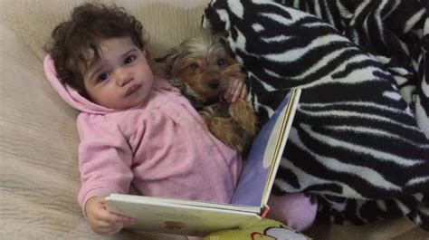 puppy bedtime baby and puppy read bedtime story and fall asleep together i pets
