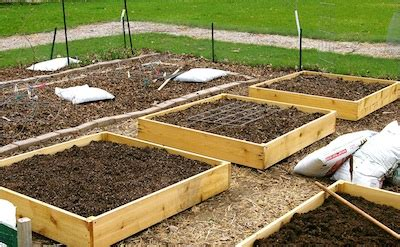 how to make a raised garden bed cheap how to build cheap and productive raised garden beds the