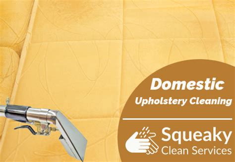 upholstery cleaner sydney home squeakycleanservices
