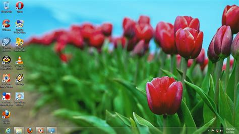 win with flower free windows theme flower windows 8 themes download 100