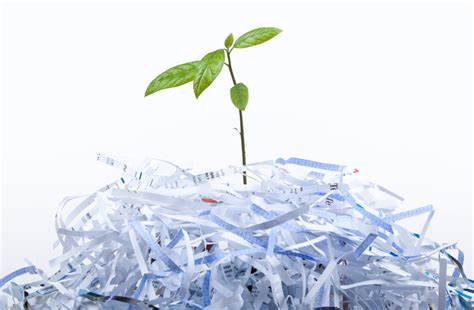 Paper From Recycled Paper - how to recycle paper recyclenation
