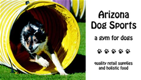 havanese agility havanese rescue clubs resources arizona r havanese