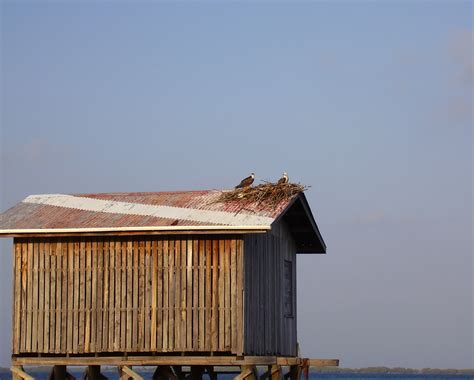 making boat legs free stock photo 1804 shed on legs freeimageslive