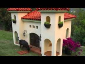 biggest dog house big dog houses youtube