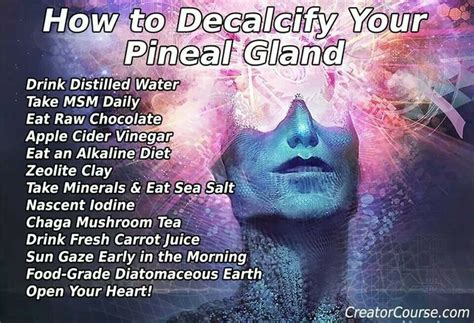 Detox Your Pineal Gland Decalcify by How To Decalcify Your Pineal Gland Health