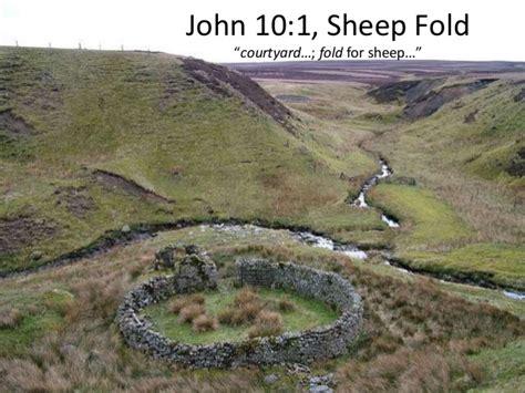 I Am The Door Of The Sheep by 10 1 11 A Shepherd Sheep Shepherd No