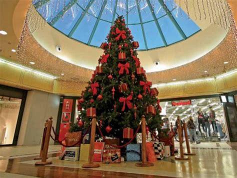 alquiler de 225 rboles de navidad gigantes de 6 metros