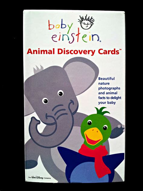 Discovery Gift Card - the gallery for gt baby einstein animal discovery cards