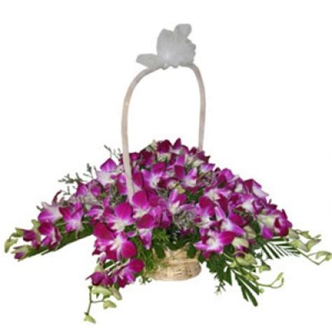 Orchid Delivery send flowers to chennai orchids flowers to chennai