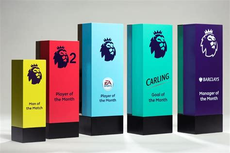 epl awards how the premier league s monthly awards work