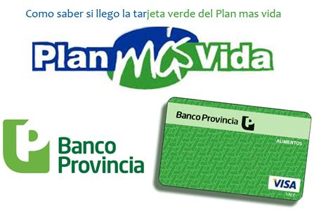 consulta de saldo visa vale social visa vale social tarjeta verde archivos plan mas vida