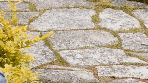 planning your front yard landscape
