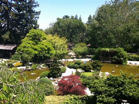 Saratoga Japanese Garden by Photos Of Saratoga Attractions Restaurants Shops