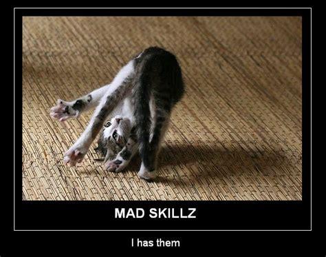 Mad Cat Memes - mad skillz cat meme cat planet cat planet