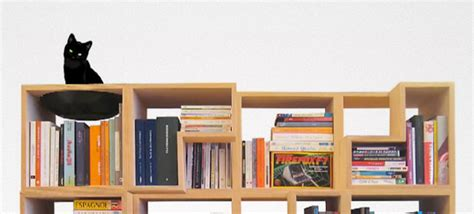 100 cat friendly modular bookshelf