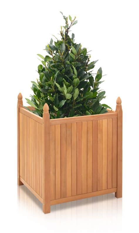 Versailles Planters Uk by Versailles Hardwood Planter 50cm Cube 163 49 99