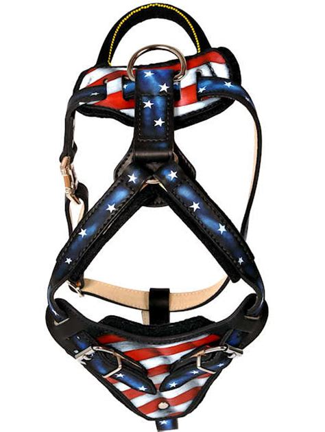 Handmade Leather Harness - painted designer custom handmade leather harness
