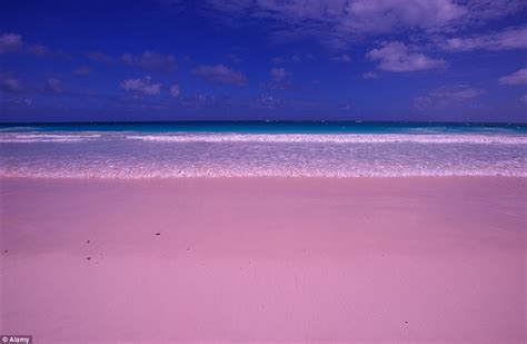 beaches with pink sand world s most unusual beaches revealed daily mail online