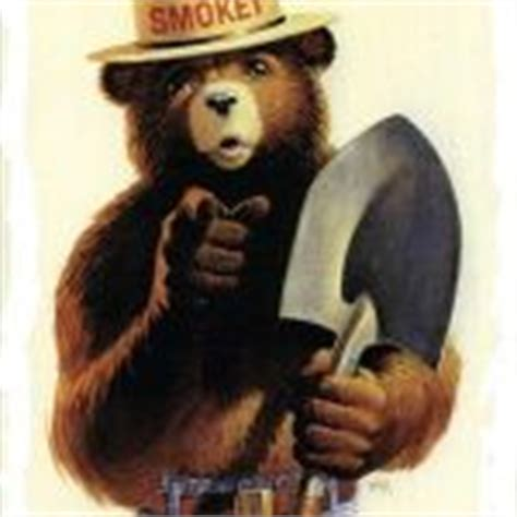 Smokey The Bear Meme Generator - smokey the bear meme generator imgflip