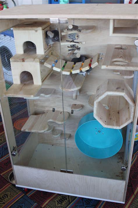pin  turtle frog  fish habitat ideas  upkeep