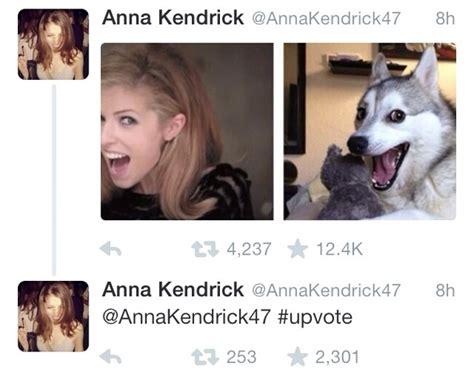 Anna Meme - anna kendrick dog meme memes