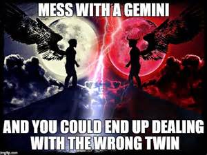 Gemini Meme - gemini imgflip