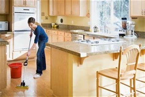 Kitchen Items In Ross Kitchen Products Green Cleaning Green Cleaning Products