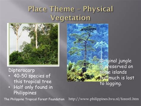 5 themes of geography tagalog ppt the philippines a 5 themes analysis powerpoint