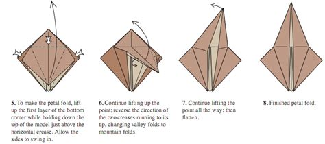 Petal Fold Origami - the of origami finesse