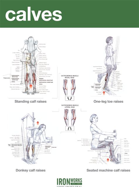 blogarticlehamstrings and calves workout exles 40