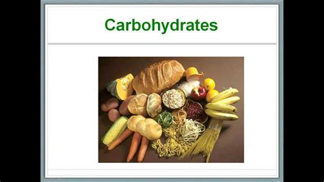 r and s carbohydrates what s in our food 4 carbohydrates doovi