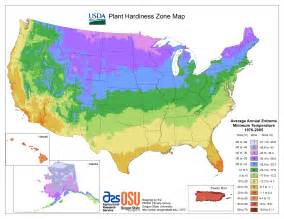 colorado climate zone map evergreen tree seedlings groupon goods